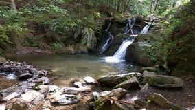 Cascadas hermosas Foto de archivo