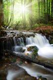 Cascadas hermosas en la Bosque-Alemania bávara Imágenes de archivo libres de regalías