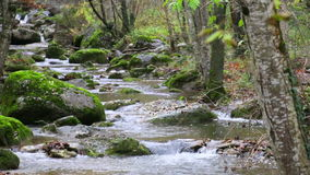 Cascadas mediterráneas del río en otoño almacen de metraje de vídeo