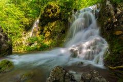 Cascadas prístinas profundamente en el bosque Imagenes de archivo