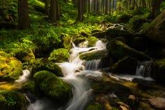 Cascadas prístinas profundamente en el bosque Fotos de archivo libres de regalías