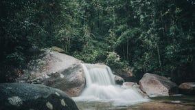 Cascadas profundamente en la selva Imágenes de archivo libres de regalías