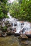 Cascadas tropicales de la cascada Imagenes de archivo