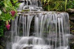cascade à écriture ligne par ligne de jardin photographie stock