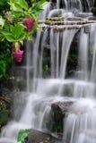cascade à écriture ligne par ligne de jardin image stock