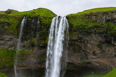 Cascade à écriture ligne par ligne de Seljalandsfoss, Islande Photo stock