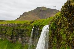 Cascade à écriture ligne par ligne de Seljalandsfoss, Islande Photographie stock libre de droits
