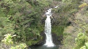 Cascade à écriture ligne par ligne en Hawaï banque de vidéos