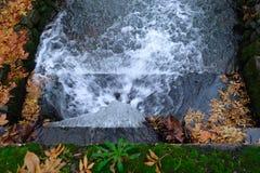 Cascade à écriture ligne par ligne et lames d'automne Image libre de droits