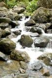 Cascade à écriture ligne par ligne 1 de forêt tropicale Photographie stock