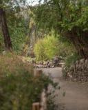 Cascade à écriture ligne par ligne au jardin japonais Photographie stock