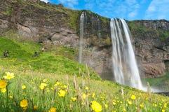 Cascade à écriture ligne par ligne célèbre de Seljalandsfoss de l'Islande Photographie stock