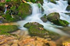 Cascade à écriture ligne par ligne crémeuse dans les forêts de la Macédoine Photo stock
