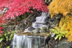 Cascade à écriture ligne par ligne d'arrière-cour avec des arbres d'érable japonais Image stock