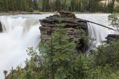 Cascade à écriture ligne par ligne d'Athabasca Photo libre de droits