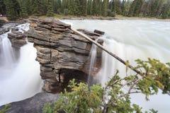 Cascade à écriture ligne par ligne d'Athabasca Photographie stock