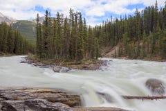 Cascade à écriture ligne par ligne d'Athabasca Photographie stock libre de droits