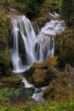 Cascade à écriture ligne par ligne d'automne Image stock