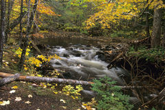 Cascade à écriture ligne par ligne d'automne photo stock
