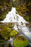 Cascade à écriture ligne par ligne d'automne dans la forêt Photo stock