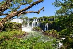Cascade à écriture ligne par ligne d'Iguazu en Argentine Photo stock
