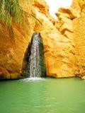 Cascade à écriture ligne par ligne dans l'oasis Chebika de montagne Photographie stock libre de droits