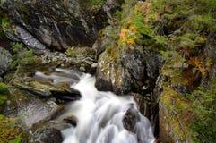 Cascade à écriture ligne par ligne dans la belle configuration d'automne. photos stock