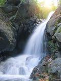 Cascade à écriture ligne par ligne dans la forêt Photo libre de droits