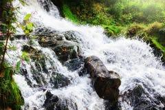 Cascade à écriture ligne par ligne dans la forêt d'automne Images stock