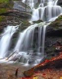 Cascade à écriture ligne par ligne dans la forêt d'automne Image libre de droits
