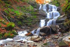 Cascade à écriture ligne par ligne dans la forêt d'automne Image stock