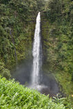 Cascade à écriture ligne par ligne dans la forêt humide photos stock