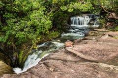 Cascade à écriture ligne par ligne dans la forêt humide Photos libres de droits