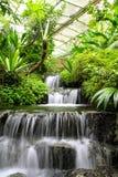 Cascade à écriture ligne par ligne dans la forêt tropicale Photos libres de droits
