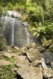 Cascade à écriture ligne par ligne dans la forêt tropicale Photographie stock