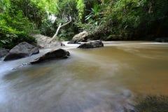 Cascade à écriture ligne par ligne dans la forêt verte Photographie stock