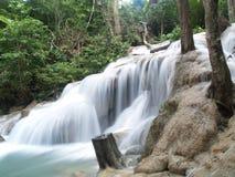 Cascade à écriture ligne par ligne dans la jungle Photos libres de droits