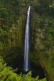 Cascade à écriture ligne par ligne dans la jungle d'Hawaï Photo libre de droits