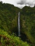 Cascade à écriture ligne par ligne dans la jungle d'Hawaï Photo stock