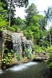Cascade à écriture ligne par ligne dans le jardin botanique du Malacca Photos stock