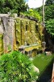 Cascade à écriture ligne par ligne dans le jardin botanique du Malacca Photographie stock libre de droits