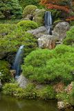 Cascade à écriture ligne par ligne dans le jardin de thé japonais Photo libre de droits