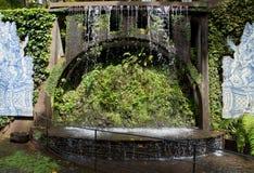 Cascade à écriture ligne par ligne dans le jardin tropical Photographie stock