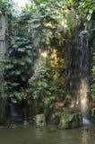 Cascade à écriture ligne par ligne dans le jardin tropical images stock