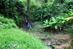 Cascade à écriture ligne par ligne dans le saint Lucia Images stock