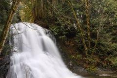 Cascade à écriture ligne par ligne dans les bois Image libre de droits