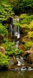 Cascade à écriture ligne par ligne dans les jardins japonais Images stock
