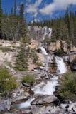 Cascade à écriture ligne par ligne dans les montagnes rocheuses Photographie stock