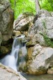 Cascade à écriture ligne par ligne dans les roches dans la forêt verte de relique Photographie stock libre de droits