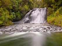 Cascade à écriture ligne par ligne dans une forêt humide abondante Photographie stock libre de droits